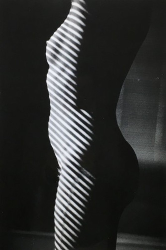 Ralph GIBSON - Photography - Tropism L'anonyme