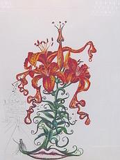 Salvador DALI - Stampa Multiplo - Lilium aurancacium et labra basrocantis.