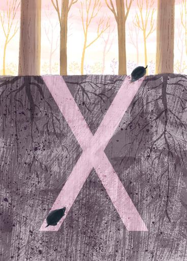 Rocío DEL MORAL - Estampe-Multiple - Animal Alphabet - The letter X    (Cat N° 6197)