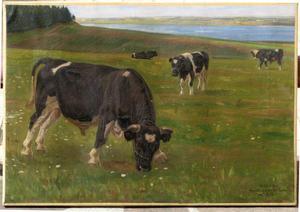 Rasmus CHRISTIANSEN - Painting - TROUPEAU DE TAURILLONS