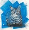 C215 - Peinture - Blue Geneva 2
