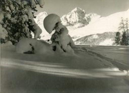 Albert STEINER - Fotografie - Wintermorgen bei St.Moritz