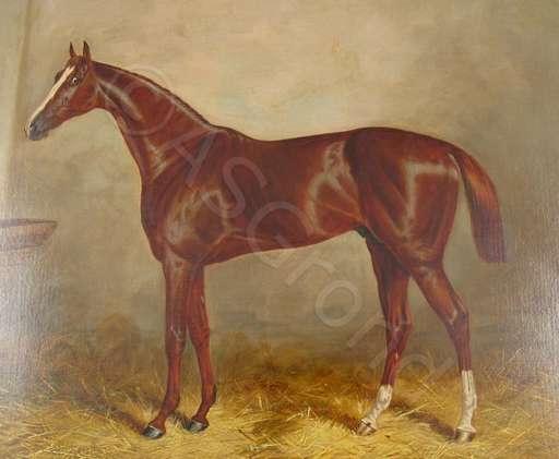 Charles HAMILTON - Painting - Prince Charlie