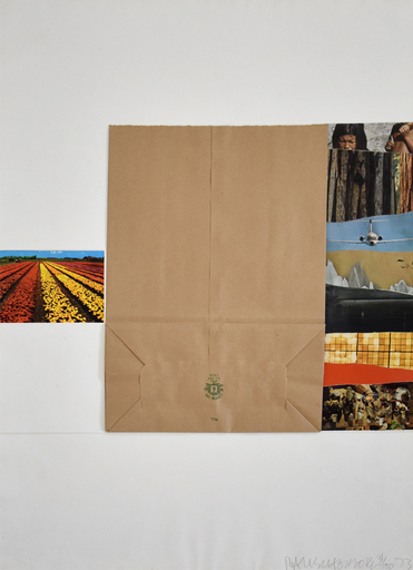 Robert RAUSCHENBERG - Stampa-Multiplo - Plot, from: Reality and Paradoxes