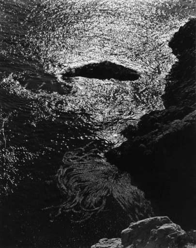 Edward Henry WESTON - Fotografia - China Cove, Point Lobos