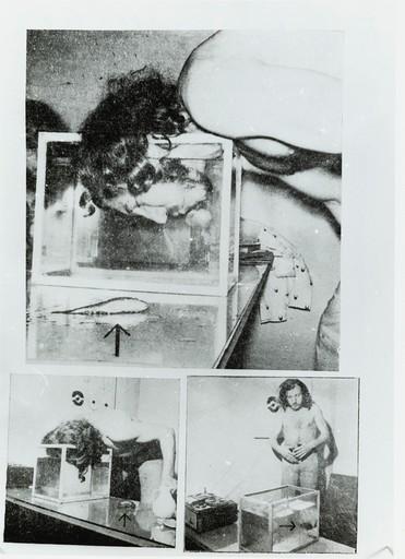 Zbigniew WARPECHOWSKI - Fotografia - II Dialogue with fish