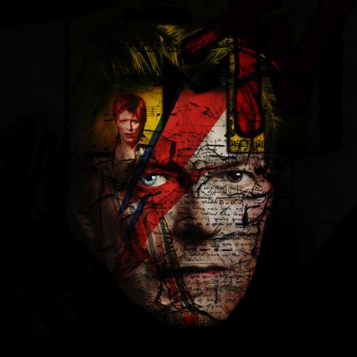 Bruno TIMMERMANS - Fotografia - Bowie +