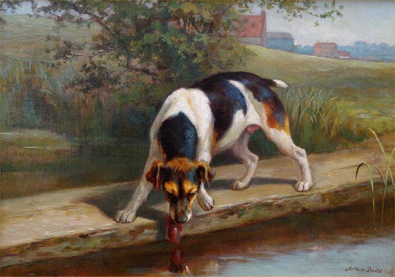 Arthur Charles DODD - Painting - Spotting his Reflection