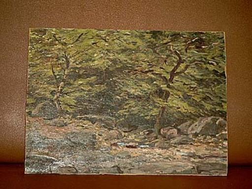 Georg HACKER - Painting - Schlucht bei Bentheim
