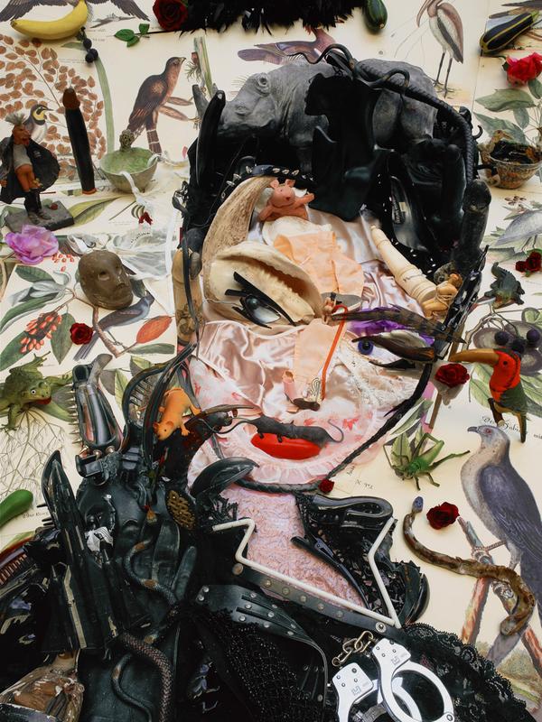 Bernard PRAS - Photography - Inventaire 60 - Catwoman