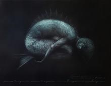 Roberto FABELO - Drawing-Watercolor - Sirena Turquesa