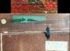 Duncan GRANT - Gemälde - Whisky & Soda still life