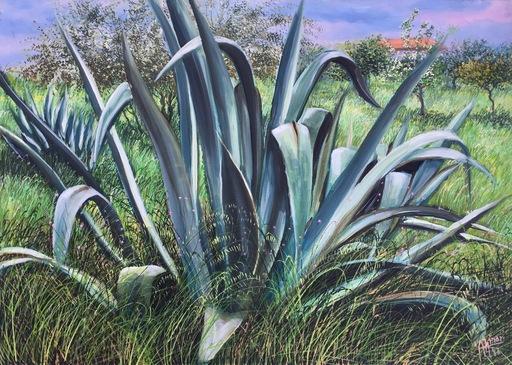 Franco AZZINARI - Pintura - Agave a Sibari