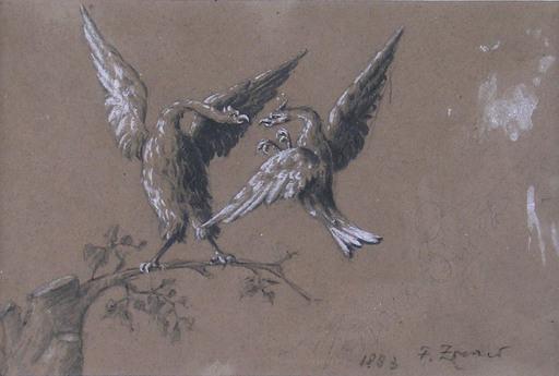 Fausto ZONARO - Drawing-Watercolor - Coppia di rapaci