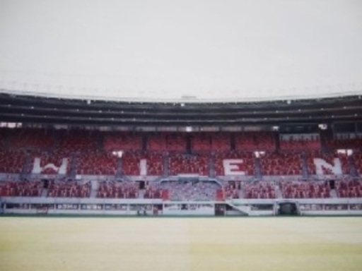 Spencer TUNICK - Photography - Austria 8 (Ernst Happel Stadion)