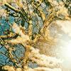 AKKADIA - Stampa-Multiplo - Revelation I / Series Sanctuary