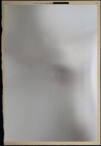 Ross BLECKNER - Estampe-Multiple - Mirror