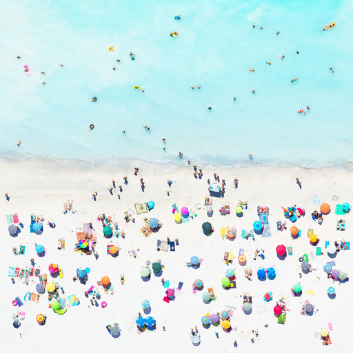 Antoine ROSE - Photo - Iced Palm