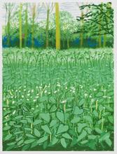 大卫•霍克尼 - 版画 - The Arrival of Spring in Woldgate, East Yorkshire in 2011. 1