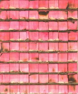 Bernard AUBERTIN - Pittura - Dessin de Feu