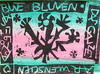 Arnold FIEDLER - Disegno Acquarello - Bunte Blumen das ganze Jahr.