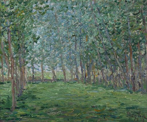 弗朗西斯·毕卡比亚 - 绘画 - Champ près d'un bois