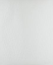 Günther UECKER - Print-Multiple - Regen