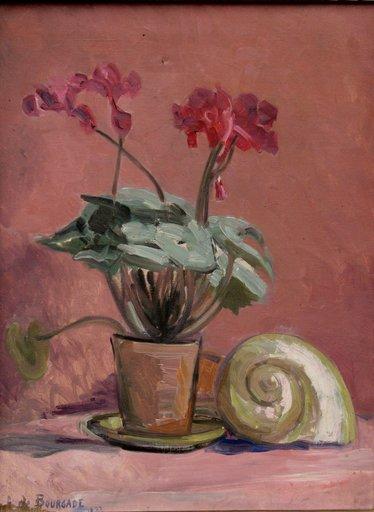 "Augusta DE BOURGADE - Painting - ""NATURE MORTE AU NAUTILE"""