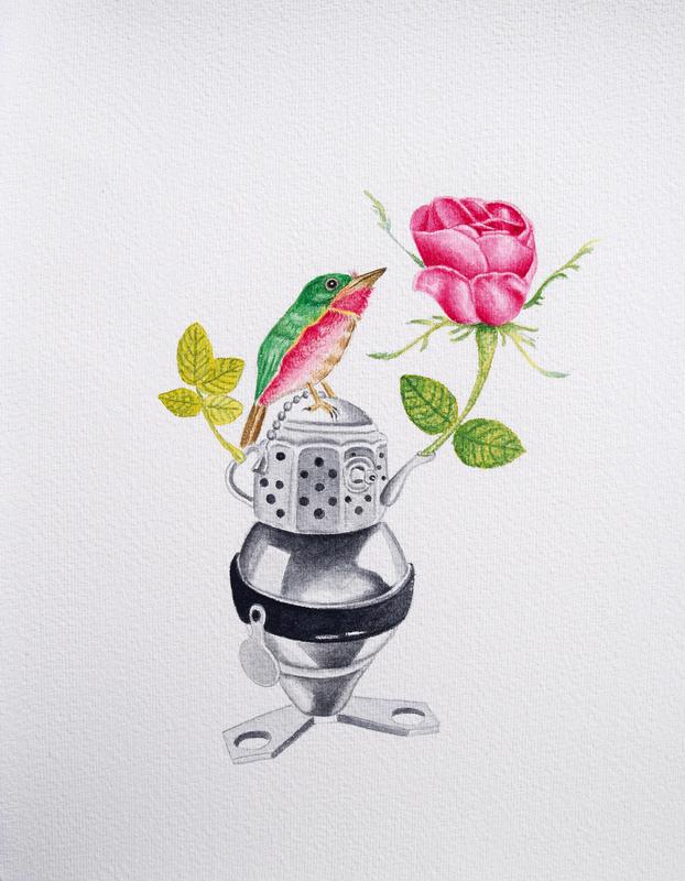 Angelo MAISTO - Disegno Acquarello - La rosa