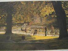 Harold ALTMAN - Grabado - Paris:Les chaises du Luxembourg,1987.