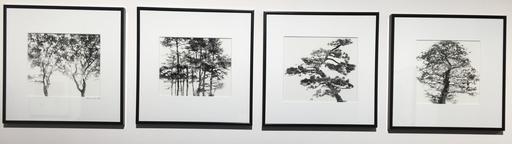 Valerie KNIGHT - Fotografia - Untitled (Quadriptych), 1998