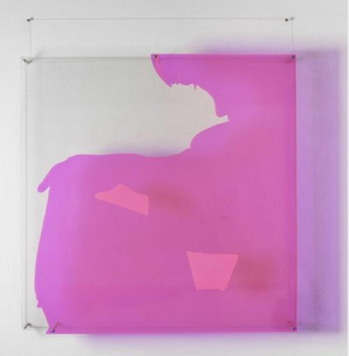 Lourdès CASTRO - Painting - ombre portée rose