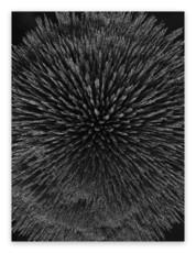 Seb JANIAK - Photography - Magnetic Radiation 99 (Large)