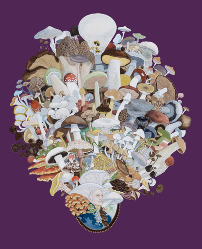 Justin RICHEL - Dibujo Acuarela - Fungus among us