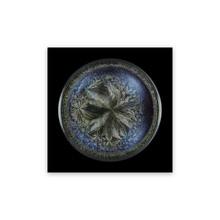 Seb JANIAK - Photo - Morphogenetic Field - Beluga Caviar (Medium)