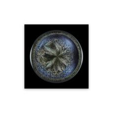 Seb JANIAK - Photography - Morphogenetic Field - Beluga Caviar (Medium)