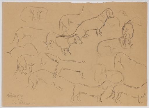 "Valeri V.G. KRAUS - Dessin-Aquarelle - ""Dachshund Studies"" by Valerie Kraus, 1912"