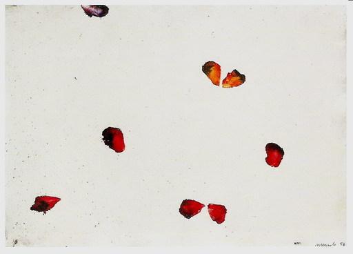 Antonio MURADO - Gemälde - petalos