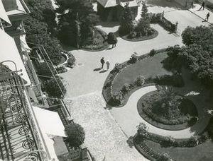 Herbert MATTER - Fotografia - Garten (Garden)