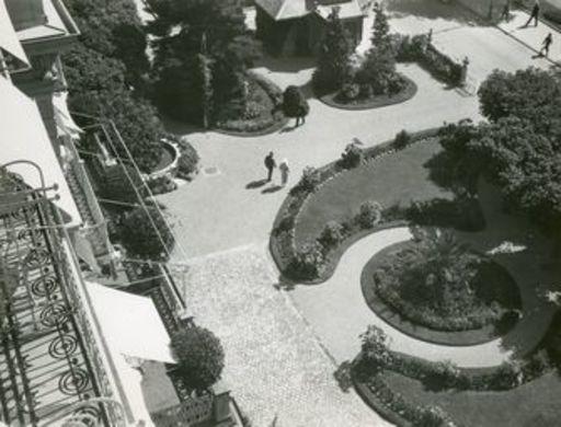 Herbert MATTER - Photography - Garten (Garden)