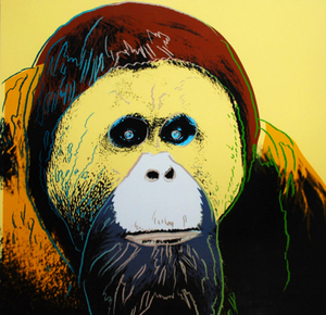 Andy WARHOL, ENDANGERED SPECIES: ORANGUTAN (1983)